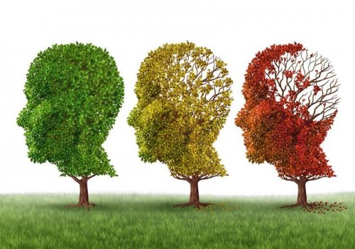 Dementia and PTSD Diagnosis: How a 3T…